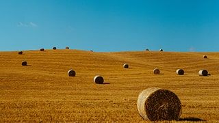 George-Kasionis-&-Stam-Tsopanakis-sony-alpha-7III-bales-of-straw-in-tuscany-field-with-blue-sky