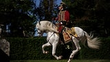 christophe-brachet-sony-alpha-9-man-dressed-in-french-war-outfit-riding-a-horse