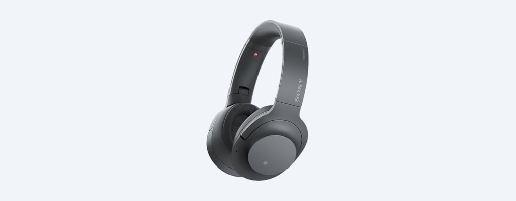 WH-H900N Gris Anthracite